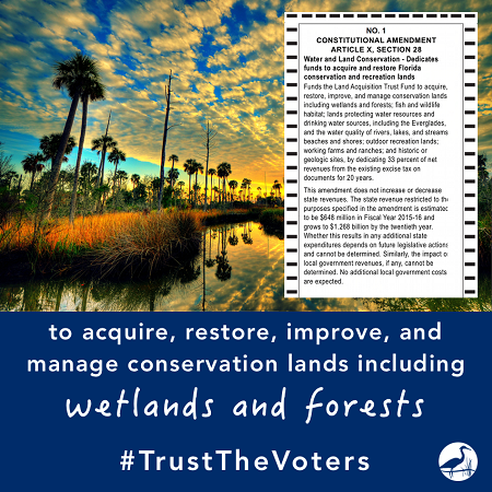 Wetlands In: Legacy Campaign Newsletter- Latest on Amendment 1 | Our Santa Fe River, Inc. (OSFR) | Protecting the Santa Fe River